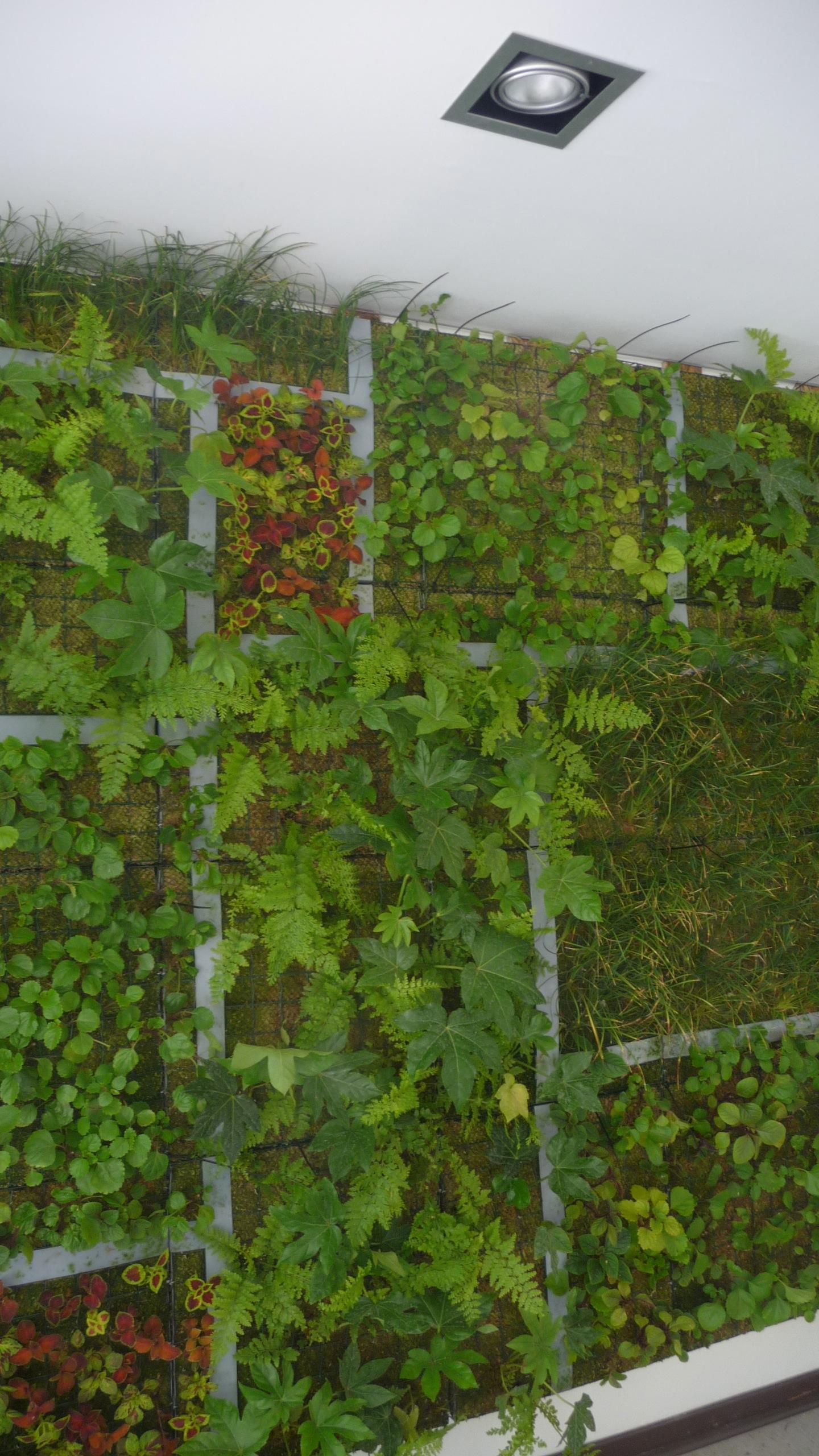 inmobiliaria iactual holanda jardines verticales