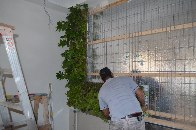 Jard n vertical bosques de la pir mide jardines verticales for Instalacion de jardines verticales